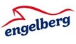 Engelberg Limousine Transport Service